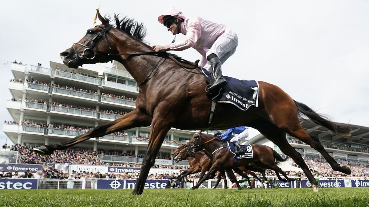 Horse racing betting documentary channel o byrne cup betting websites