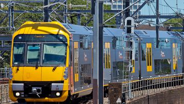 A teenager was allegedly groped on a train in Sydney