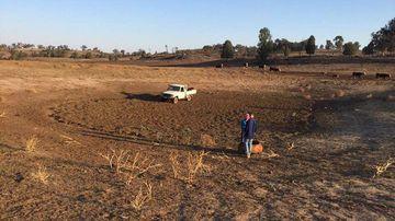 Drought Australia NSW assistance money fodder handouts Coonabarabran