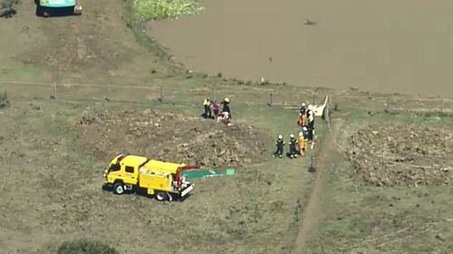 Horse rescued from mud pit