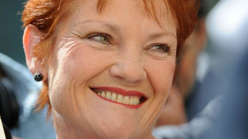 Pauline Hanson to return and lead One Nation again: report