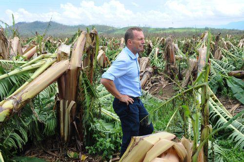 Then Liberal leader Tony Abbott surveys destroyed banana plantations at Tully.