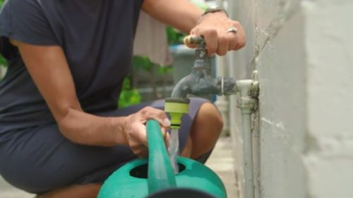 There are fresh calls for shower buckets to be brought back for garden watering. (9NEWS)