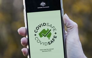 Millions spent on promoting government's COVIDSafe app, but how many cases did it detect?