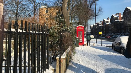 Londoners woke up to thick snow on Wednesday. (Gabrielle Adams)