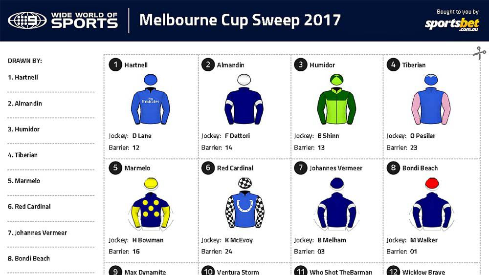 Melbourne Cup sweep: Your printable PDF for 2017