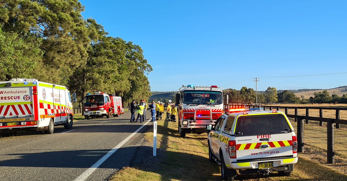 Two people airlifted to hospital and horses killed in NSW Hunter Region crash – 9News