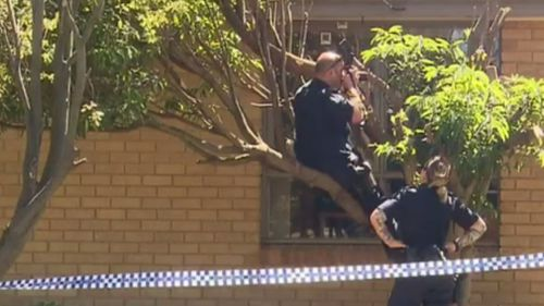 Police combed the scene for evidence. (9NEWS)