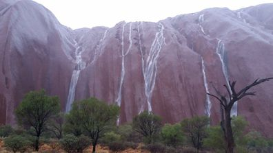 After a dry 2015, Australia's iconic rock formation Uluru has been dramatically altered by a recent deluge.<br /><br />Photos shared to the Parks Australia Facebook account yesterday show the Northern Territory landmark covered with rivulets, its normally red surface rendered mahogany by rain.<br /><br />Uluru received approximately 7.5mm of rainfall at the time the pictures were taken, around January 12.(Facebook/Parks Australia/Uluṟu-Kata Tjuṯa National Park)<br /><strong><br />Click through to see more photos of this desert splendour.</strong>