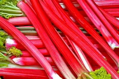 Rhubarb (raw): 1.1g sugar per 100g