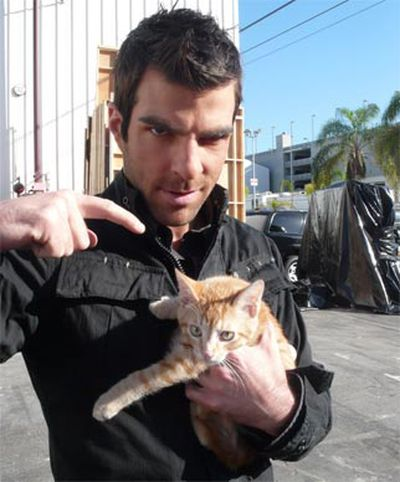 Stars and their cute kitties!<br/><br/>Hero cat