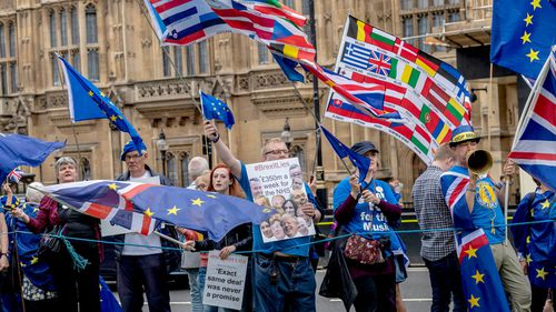 Protesters outside the UK Parliament in central London. (AAP).