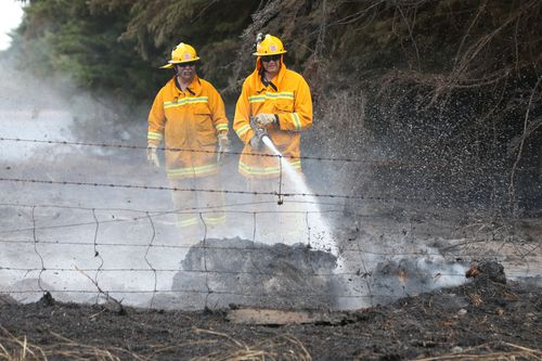 Hundreds of livestock were killed in the fires. (AAP)