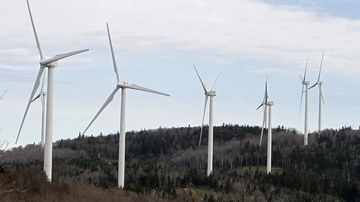 Are you willing to pay more for renewable energy?