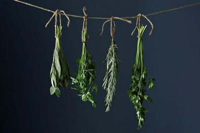 Why are my herbs dying? Common kitchen herb garden mistakes