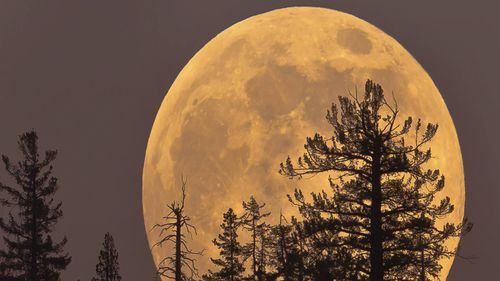 The biggest and brightest supermoon