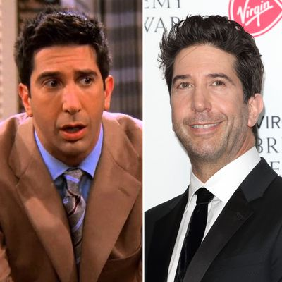 David Schwimmer as Ross Geller