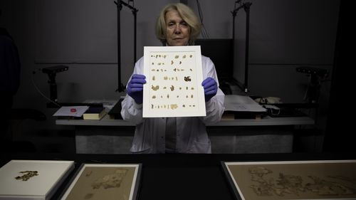 Israeli experts announce discovery of new Dead Sea scrolls