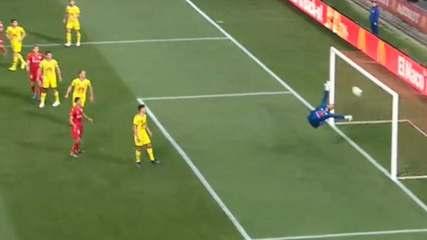 Nikola Mileusnic scores a screamer