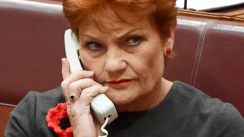 We hear you, Joyce says on One Nation poll