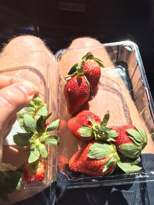 The incident occurred on Sunday after a punnet of strawberries was purchased from a Brisbane supermarket.