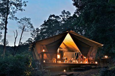 <strong>Nightfall Camp, Lamington, QLD</strong>