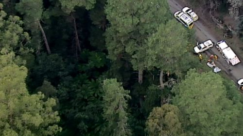 Woman, man and baby freed after car plunges 30m off cliff in regional Victoria