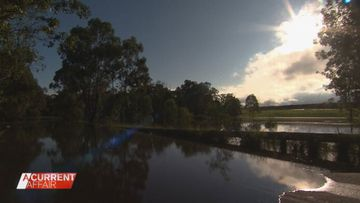 Rays of hope, but NSW residents aren't out of the woods yet