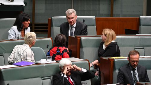 Leader of Opposition Business Tony Burke speaks to crossbenchers on the last day of Parliament.