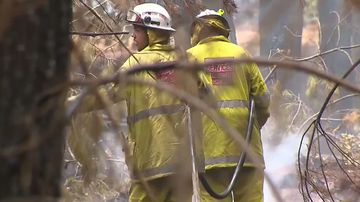 Hunt on for arsonist after bushfire that blacked out Perth sky
