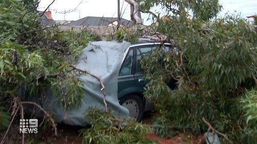 Freak weather event rips through Adelaide suburb