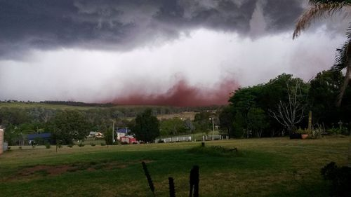 A huge dust cloud in Tingoora. (Facebook/Barry Collins)