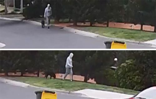 Police are seeking to speak with this dog-walker, who they believe may have crossed paths with Dick.