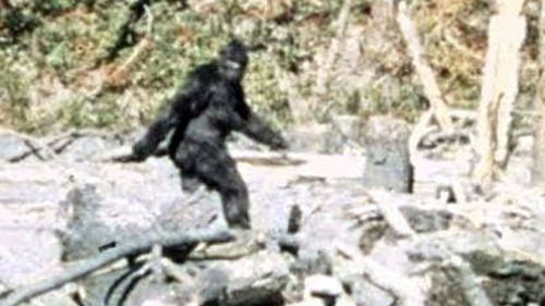 FBI Releases New Information On Bigfoot