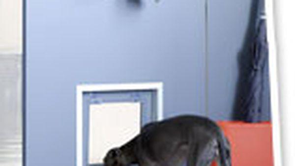 DIY doggy door