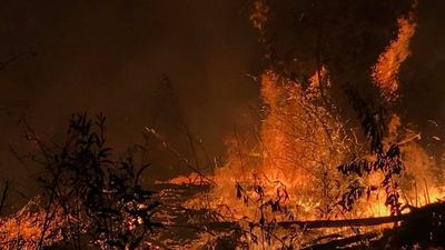 Man charged with deliberately lighting bushfire