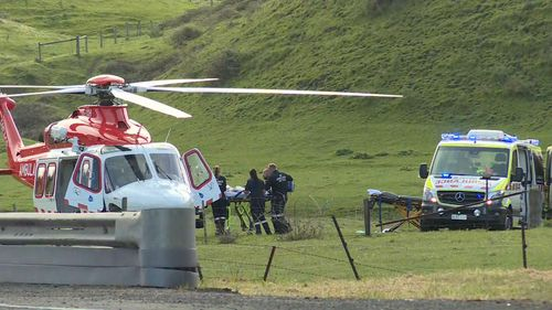 A 29-year-old woman and a seven-year-old girl were airlifted to hospital.