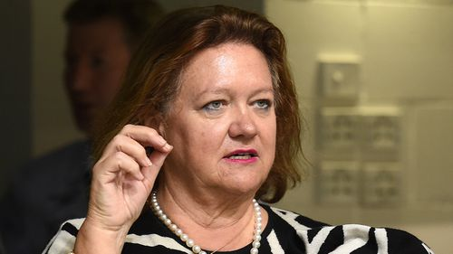 Mining tycoon Gina Rinehart was the only female to make it into the top five of Australia's richest individuals. Picture: AAP.