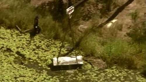 Police have found a box in a Kingston dam in the search for Cory Breton and Iuliana Triscaru.