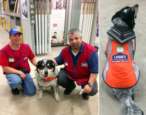 Canadian home improvement store hires man with brain injury and service dog