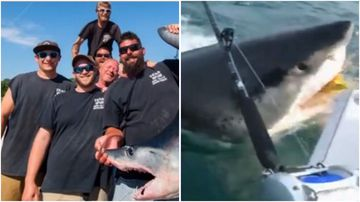 A group of New Jersey fishermen got a fright when a shark stole their bait off the back of the boat.