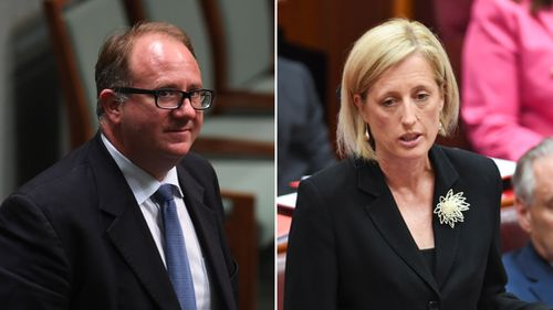 David Feeney and Katy Gallagher will have their citizenship cases heard. (AAP)