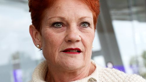 "One Nation leader Pauline Hanson said she won't support the government's proposed legislation slashing company taxes until it agrees to ""go after multinationals"". Picture: AAP"