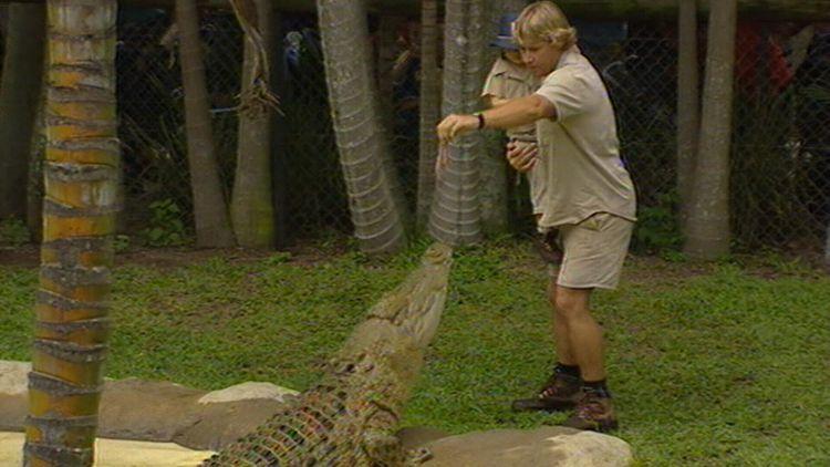 Bindi Irwin remembers Crocodile Hunter father Steve on anniversary of his death