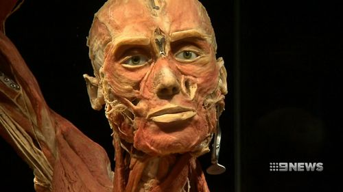 The Body World's Vital exhibit is an eye-opening display.