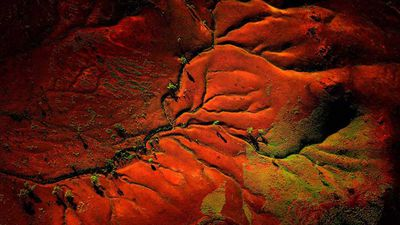 Stunning aerial photography shows Australia's incredible, ravaged beauty