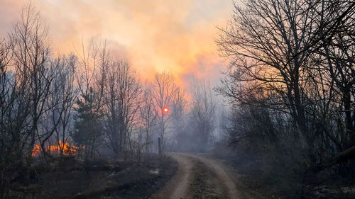 Forest fire burns 5km from Chernobyl nuclear plant