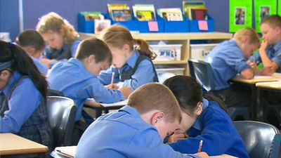 NAPLAN results reveal student progress has flatlined