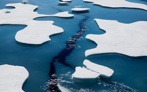 Warming shrinks Arctic Ocean ice to second lowest level on record