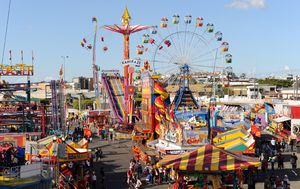 Ekka public holiday changes proposed by leading Queensland tourism bodies